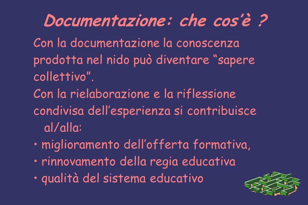 Documentazione: che cosè ? Con la documentazione la conoscenza prodotta nel nido può diventare sapere collettivo. Con la rielaborazione e la riflessio