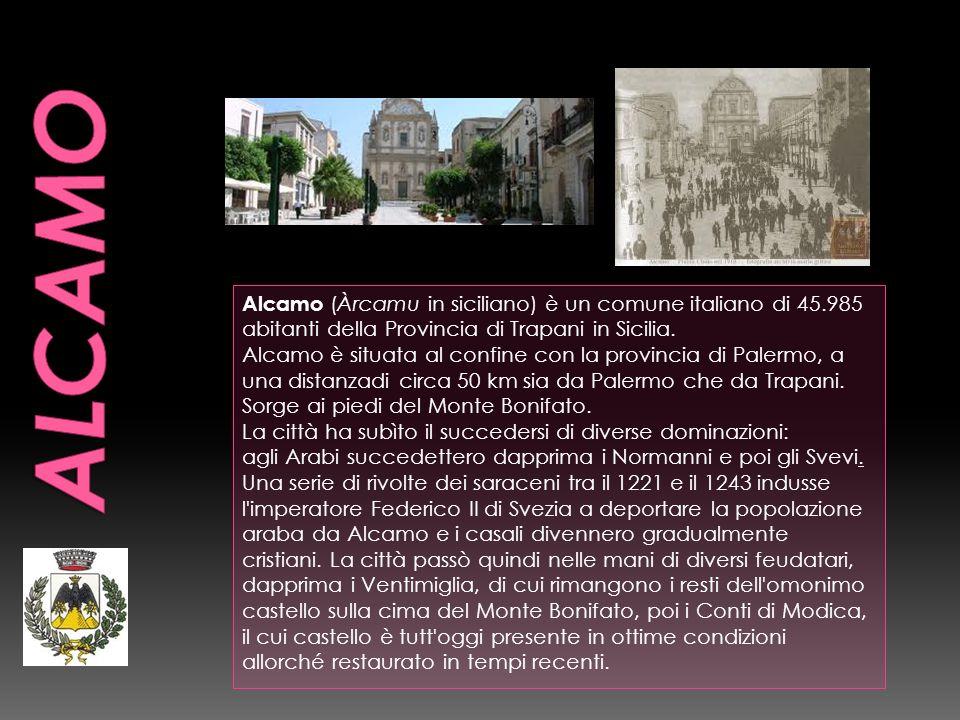 Alcamo (Àrcamu in siciliano) è un comune italiano di 45.985 abitanti della Provincia di Trapani in Sicilia. Alcamo è situata al confine con la provinc