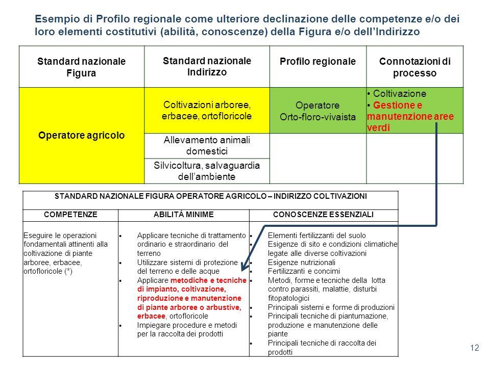 12 Standard nazionale Figura Standard nazionale Indirizzo Profilo regionaleConnotazioni di processo Operatore agricolo Coltivazioni arboree, erbacee,