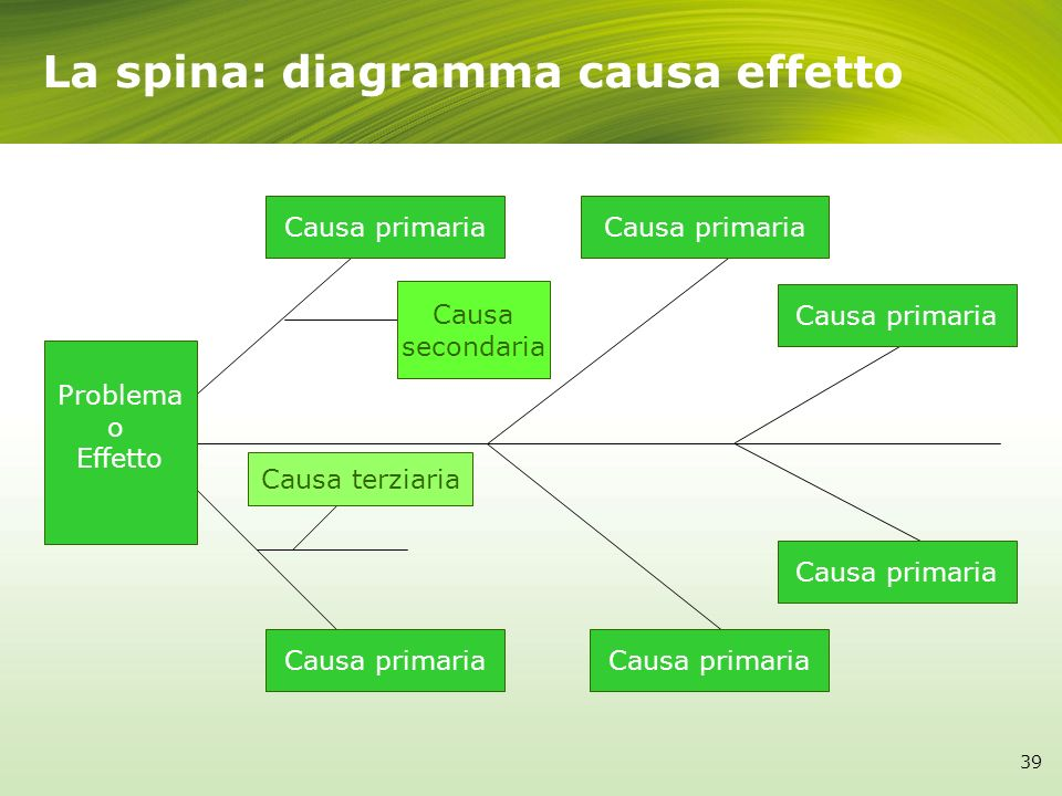Problema o Effetto Causa primaria Causa secondaria Causa terziaria Causa primaria La spina: diagramma causa effetto 39