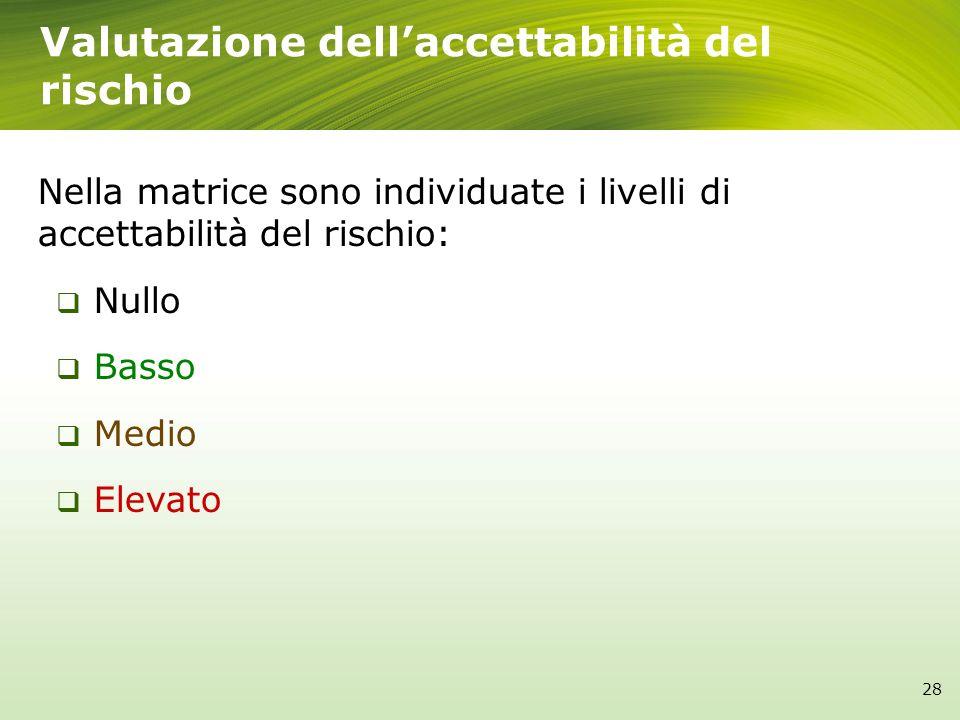 Valutazione dellaccettabilità del rischio Nella matrice sono individuate i livelli di accettabilità del rischio: Nullo Basso Medio Elevato 28