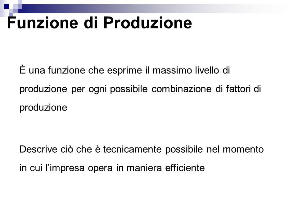 Funzione di Produzione È una funzione che esprime il massimo livello di produzione per ogni possibile combinazione di fattori di produzione Descrive ciò che è tecnicamente possibile nel momento in cui limpresa opera in maniera efficiente