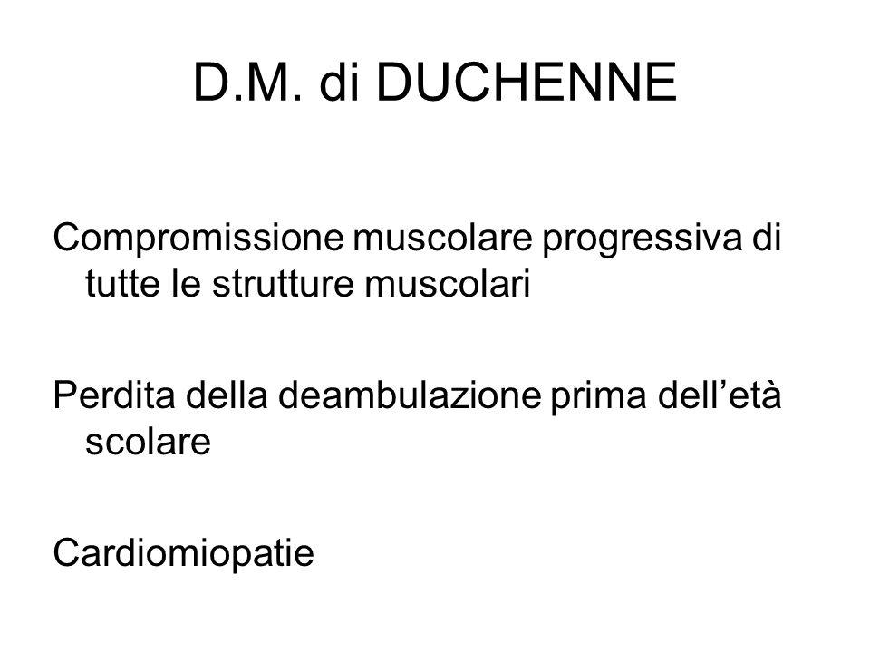 D.M. di DUCHENNE Compromissione muscolare progressiva di tutte le strutture muscolari Perdita della deambulazione prima delletà scolare Cardiomiopatie