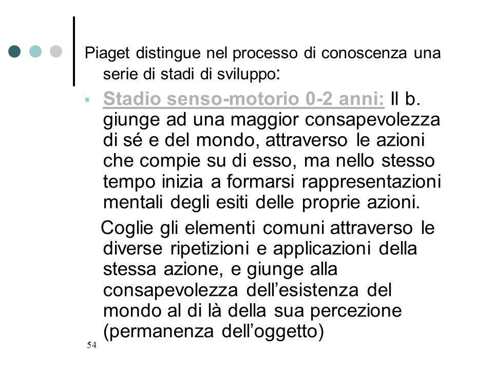 54 Piaget distingue nel processo di conoscenza una serie di stadi di sviluppo : Stadio senso-motorio 0-2 anni: Il b. giunge ad una maggior consapevole