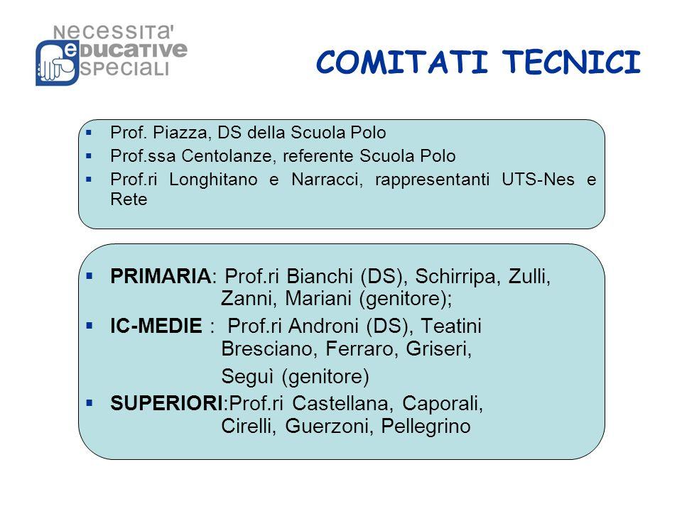 COMITATI TECNICI Prof. Piazza, DS della Scuola Polo Prof.ssa Centolanze, referente Scuola Polo Prof.ri Longhitano e Narracci, rappresentanti UTS-Nes e