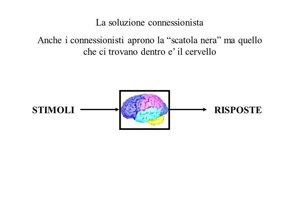 STIMOLIRISPOSTE La soluzione connessionista Anche i connessionisti aprono la scatola nera ma quello che ci trovano dentro e il cervello