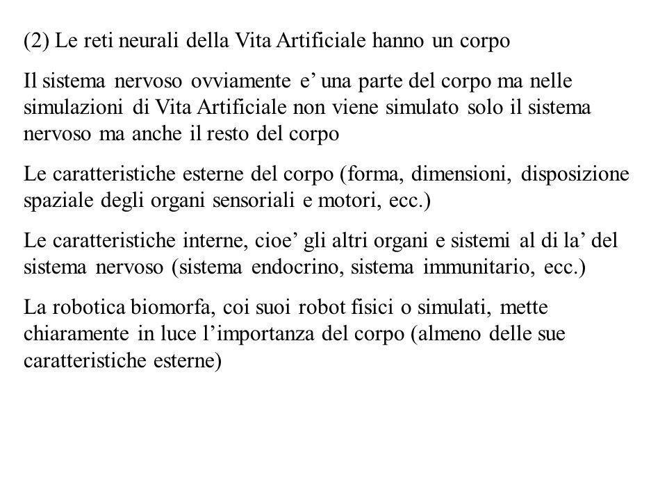 (2) Le reti neurali della Vita Artificiale hanno un corpo Il sistema nervoso ovviamente e una parte del corpo ma nelle simulazioni di Vita Artificiale
