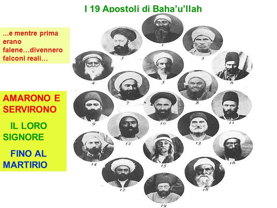 I 19 Apostoli di Bahaullah AMARONO E SERVIRONO IL LORO SIGNORE FINO AL MARTIRIO...e mentre prima erano falene…divennero falconi reali…