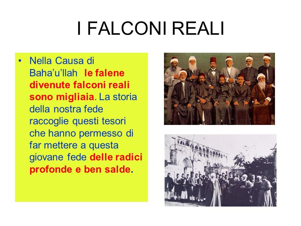 I FALCONI REALI Nella Causa di Bahaullah le falene divenute falconi reali sono migliaia. La storia della nostra fede raccoglie questi tesori che hanno