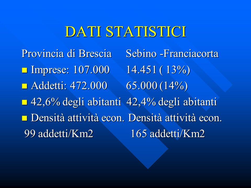 SEBINO- FRANCIACORTA Crescita attività economiche dal 1991 al 2000: più del 100% Crescita attività economiche dal 1991 al 2000: più del 100% Suolo urbanizzato Suolo urbanizzato nel 1950: nel 2000: nel 1950: nel 2000: 8,3 milioni di mq 46,5 milioni di mq Una superficie 6 volte superiore in 50 anni Lo sviluppo consuma il territorio Lo sviluppo consuma il territorio