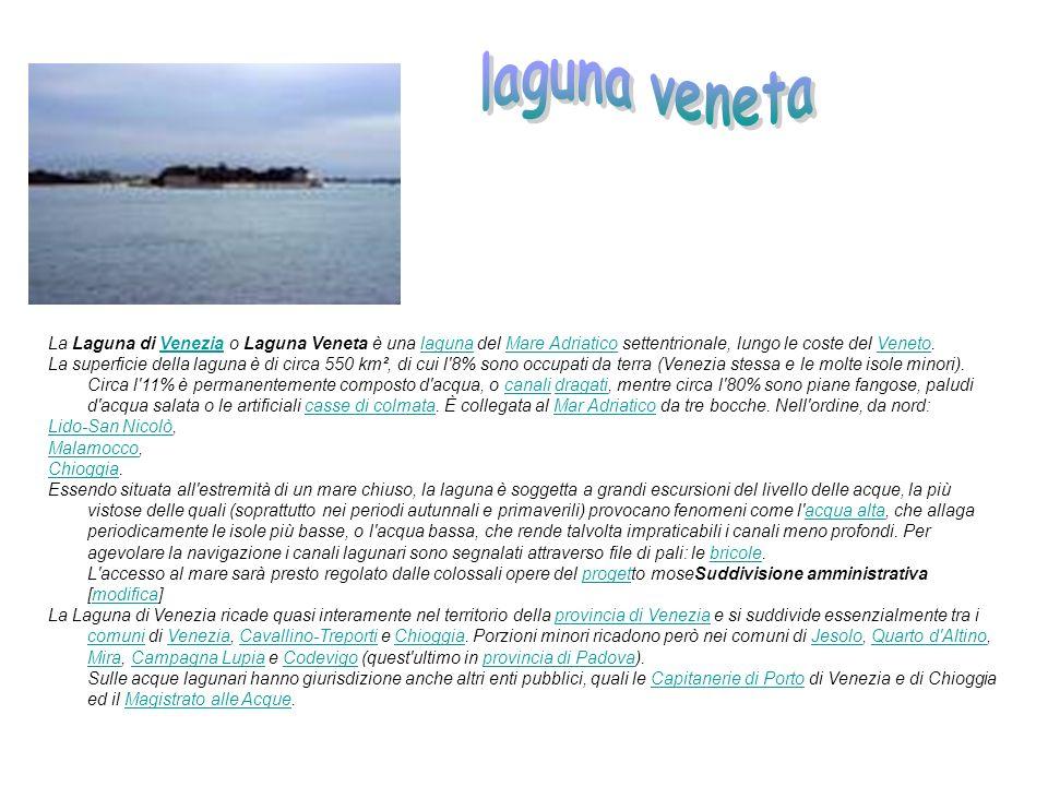 La Laguna di Venezia o Laguna Veneta è una laguna del Mare Adriatico settentrionale, lungo le coste del Veneto.VenezialagunaMare AdriaticoVeneto La su