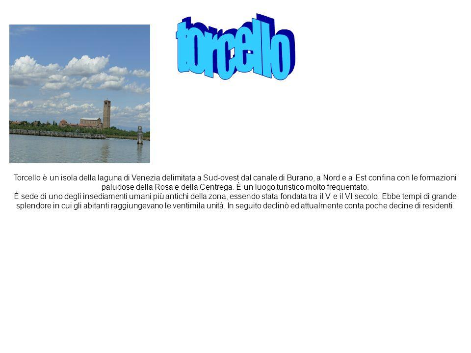 Torcello è un isola della laguna di Venezia delimitata a Sud-ovest dal canale di Burano, a Nord e a Est confina con le formazioni paludose della Rosa