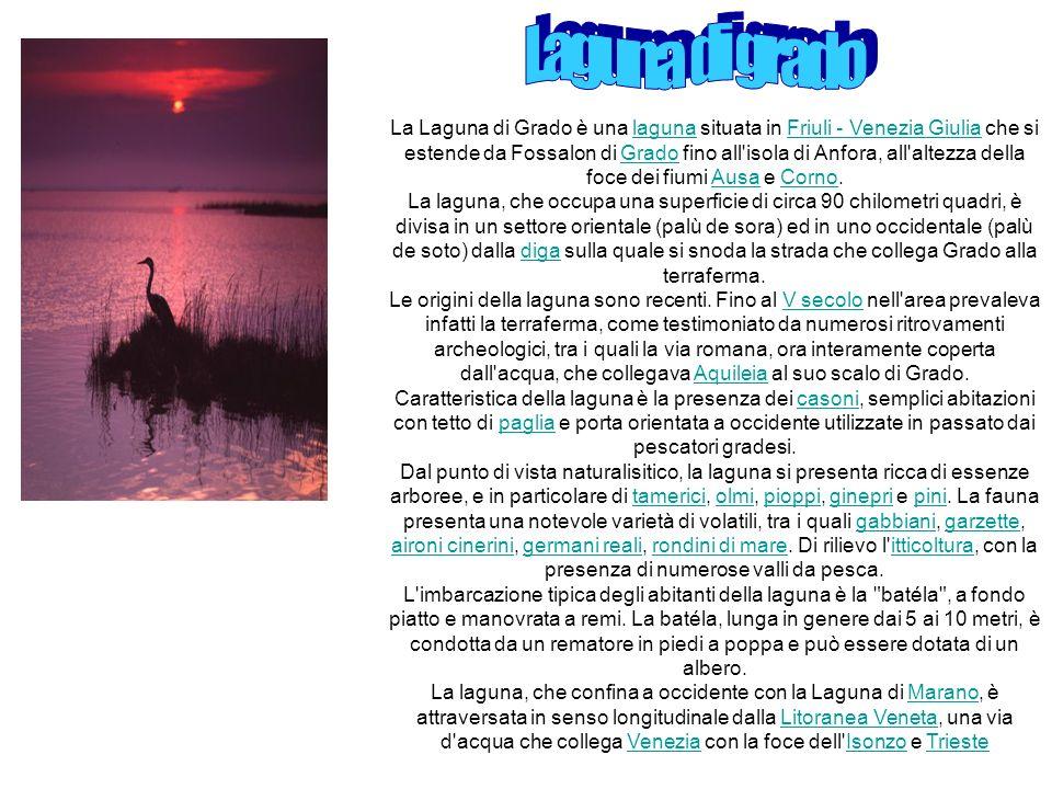 La Laguna di Grado è una laguna situata in Friuli - Venezia Giulia che si estende da Fossalon di Grado fino all'isola di Anfora, all'altezza della foc