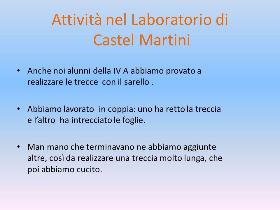 Attività nel Laboratorio di Castel Martini Anche noi alunni della IV A abbiamo provato a realizzare le trecce con il sarello. Abbiamo lavorato in copp