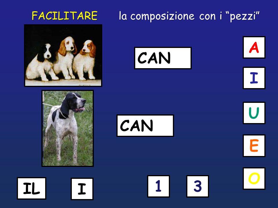 CAN U O I E A 31 I IL la composizione con i pezzi FACILITARE