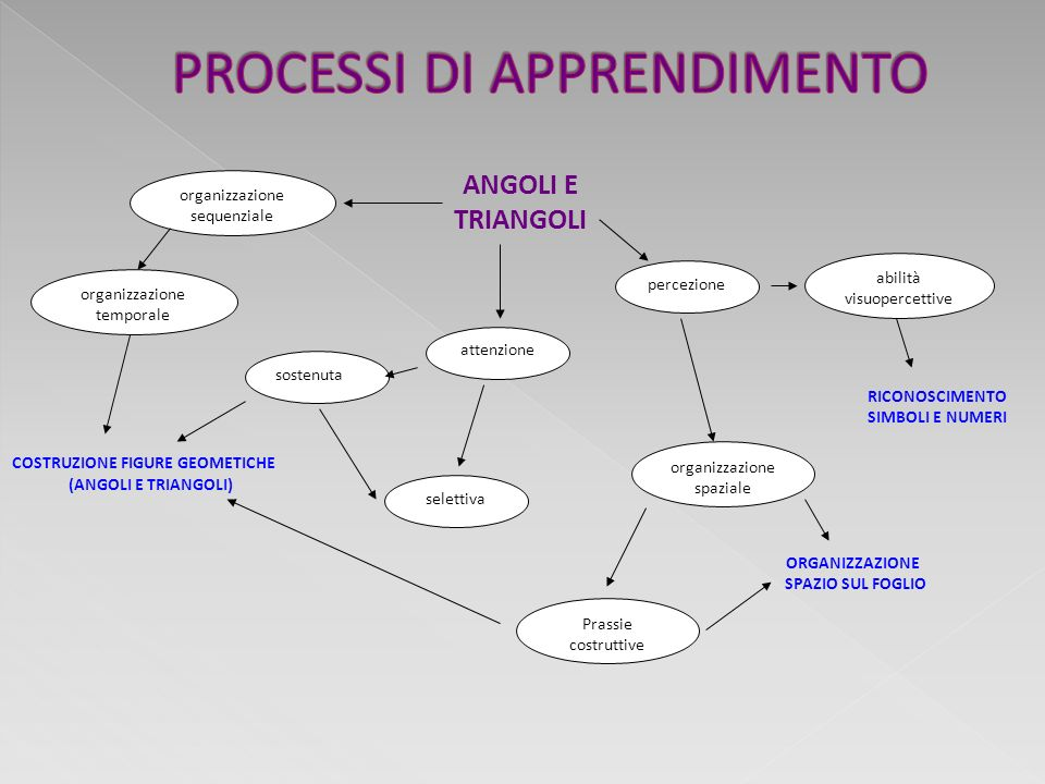 Co – costruzione del sapere Sperimentazione Relazione Comunicazione Cooperazione Attenzione a non adattare e/o conformare