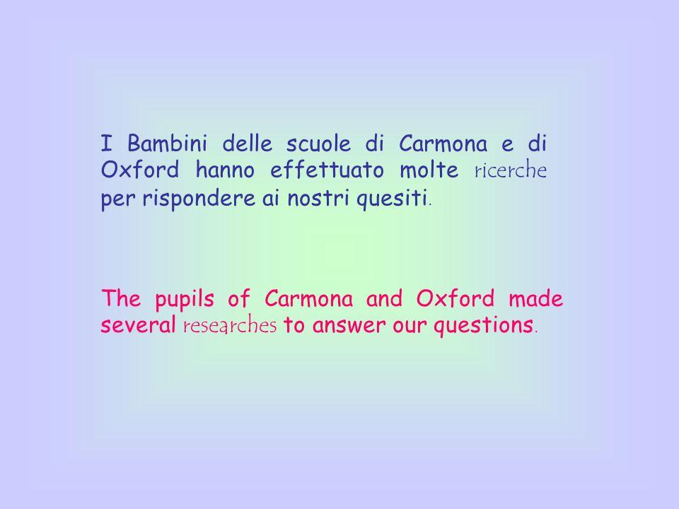 I Bambini delle scuole di Carmona e di Oxford hanno effettuato molte ricerche per rispondere ai nostri quesiti.