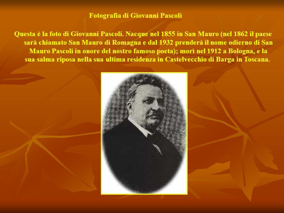 Questo è il monumento dedicato al nostro poeta Giovanni Pascoli. Si trova nel giardino adiacente alla sua casa natale.