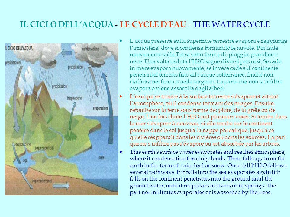 IL CICLO DELLACQUA - LE CYCLE D EAU - THE WATER CYCLE Lacqua presente sulla superficie terrestre evapora e raggiunge latmosfera, dove si condensa formando le nuvole.