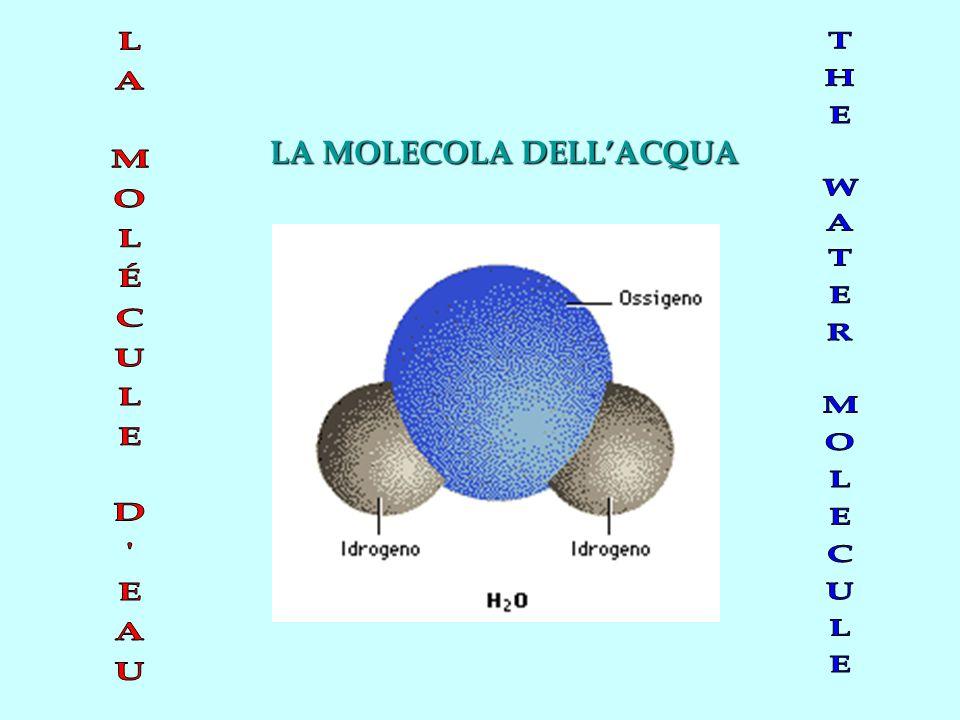 LA MOLECOLA DELLACQUA