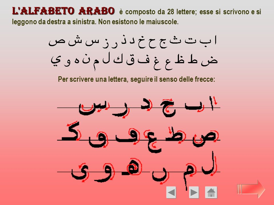 L'alfabeto arabo L'alfabeto arabo è composto da 28 lettere; esse si scrivono e si leggono da destra a sinistra. Non esistono le maiuscole. Per scriver