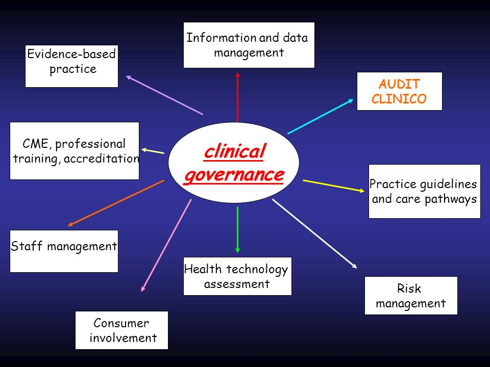 clinical governance AUDIT CLINICO Practice guidelines and care pathways Information and data management Evidence-based practice Risk management Health