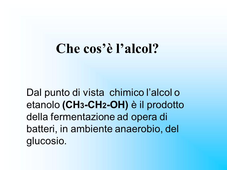 Che cosè lalcol? Dal punto di vista chimico lalcol o etanolo (CH 3 -CH 2 -OH) è il prodotto della fermentazione ad opera di batteri, in ambiente anaer