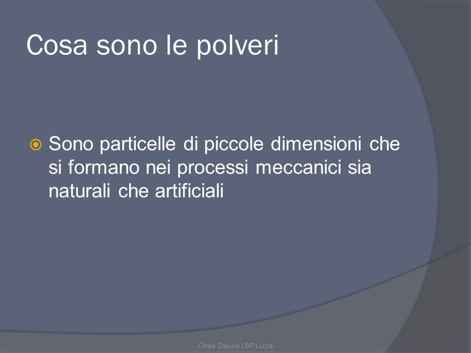 Cosa sono le polveri Sono particelle di piccole dimensioni che si formano nei processi meccanici sia naturali che artificiali Cinzia Delucis LSP Lucca