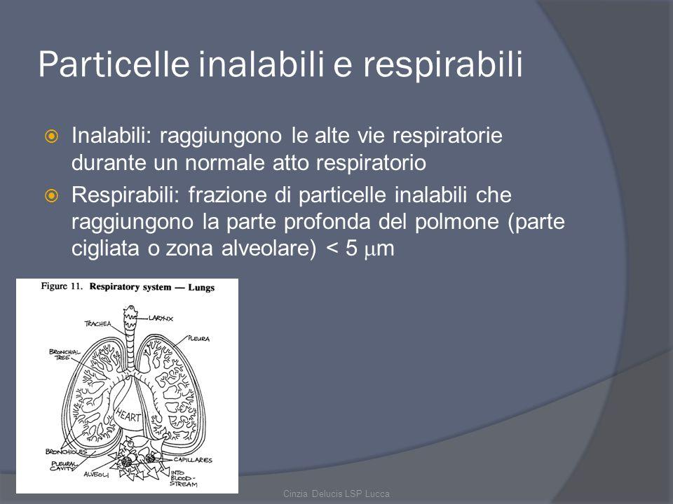 Particelle inalabili e respirabili Inalabili: raggiungono le alte vie respiratorie durante un normale atto respiratorio Respirabili: frazione di parti