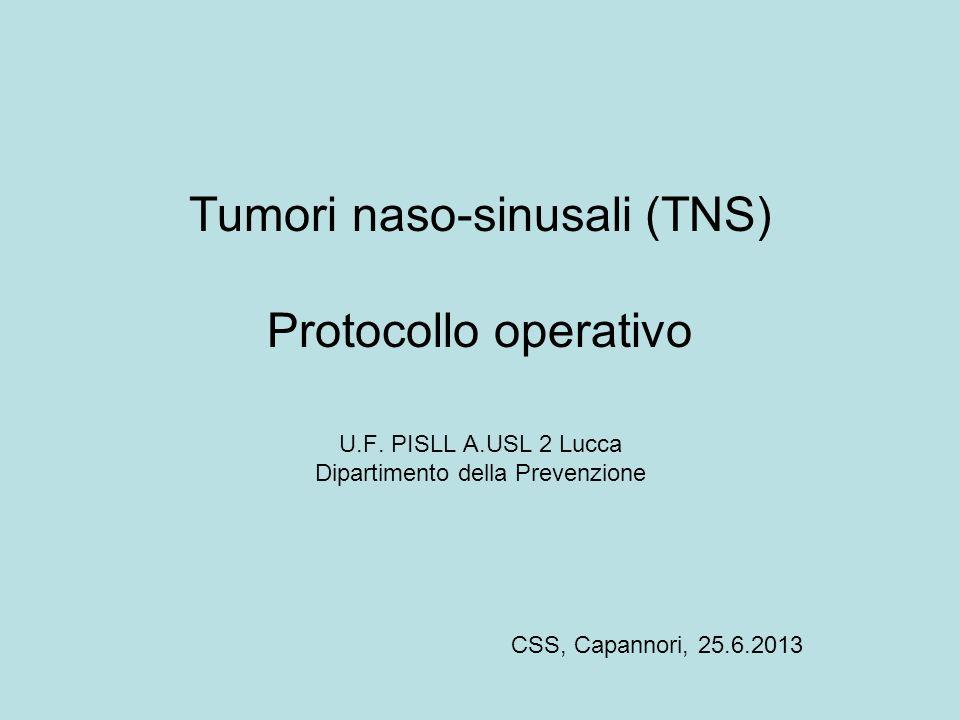Tumori naso-sinusali (TNS) Protocollo operativo U.F. PISLL A.USL 2 Lucca Dipartimento della Prevenzione CSS, Capannori, 25.6.2013
