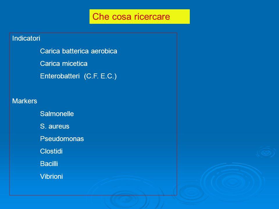 Che cosa ricercare Indicatori Carica batterica aerobica Carica micetica Enterobatteri (C.F.