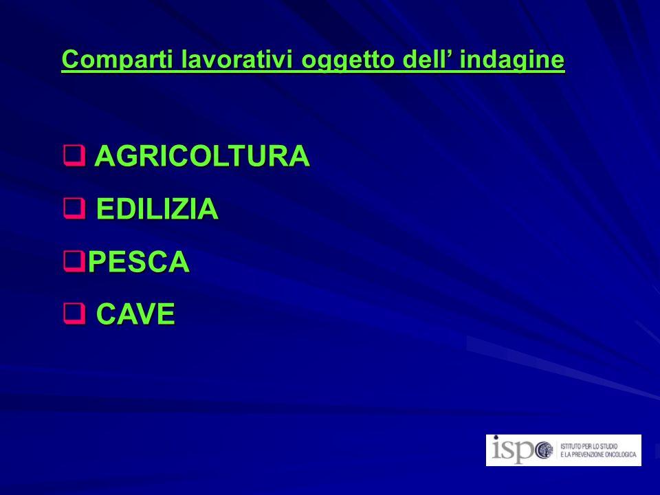 Comparti lavorativi oggetto dell indagine AGRICOLTURA AGRICOLTURA EDILIZIA EDILIZIA PESCA PESCA CAVE CAVE