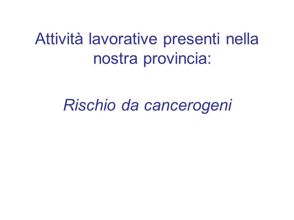 Attività lavorative presenti nella nostra provincia: Rischio da cancerogeni