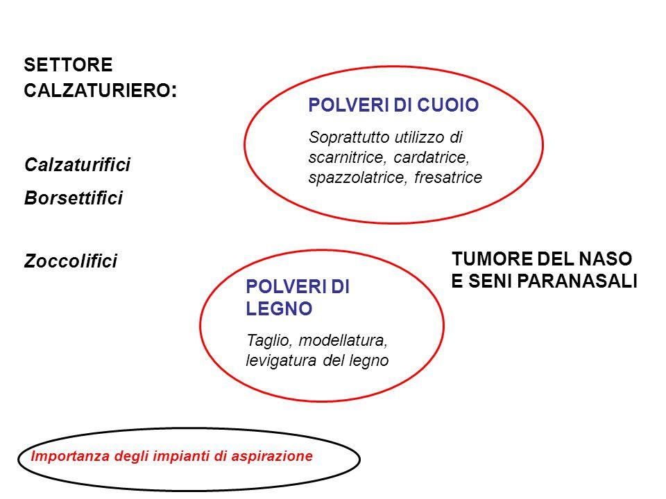 SETTORE CALZATURIERO : Calzaturifici Borsettifici Zoccolifici POLVERI DI CUOIO Soprattutto utilizzo di scarnitrice, cardatrice, spazzolatrice, fresatr