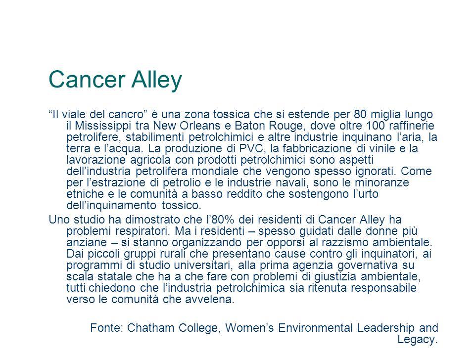 Cancer Alley Il viale del cancro è una zona tossica che si estende per 80 miglia lungo il Mississippi tra New Orleans e Baton Rouge, dove oltre 100 ra