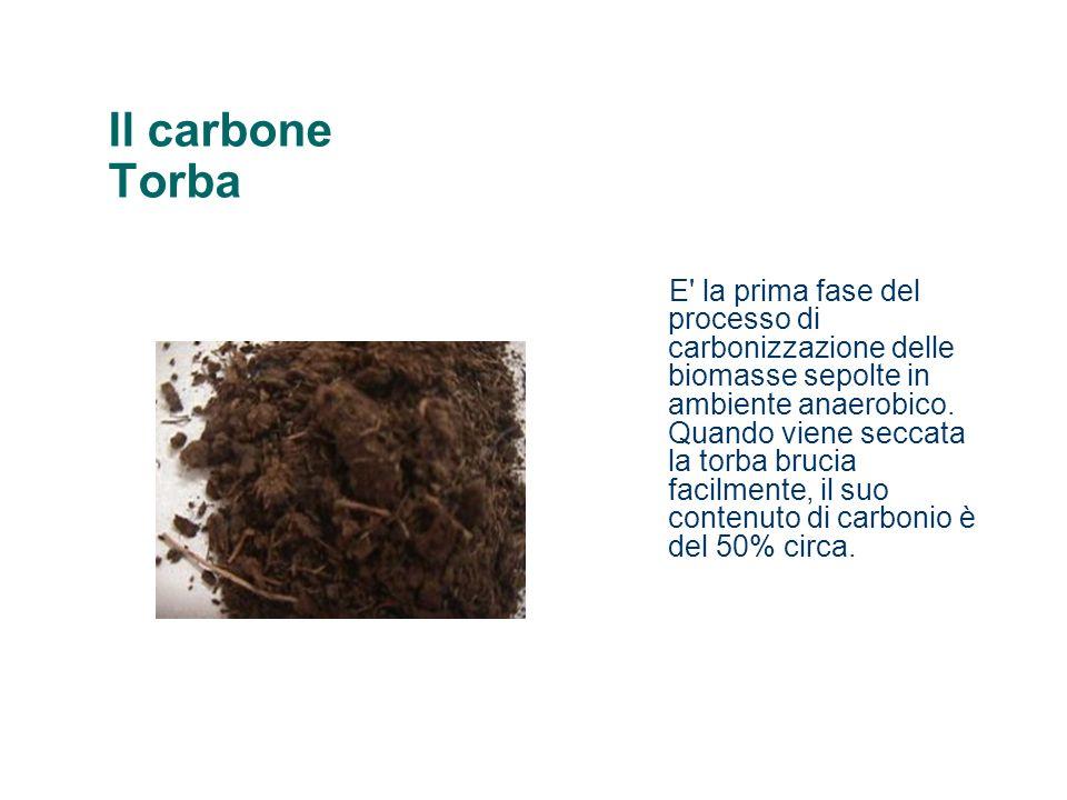 Il carbone Torba E' la prima fase del processo di carbonizzazione delle biomasse sepolte in ambiente anaerobico. Quando viene seccata la torba brucia