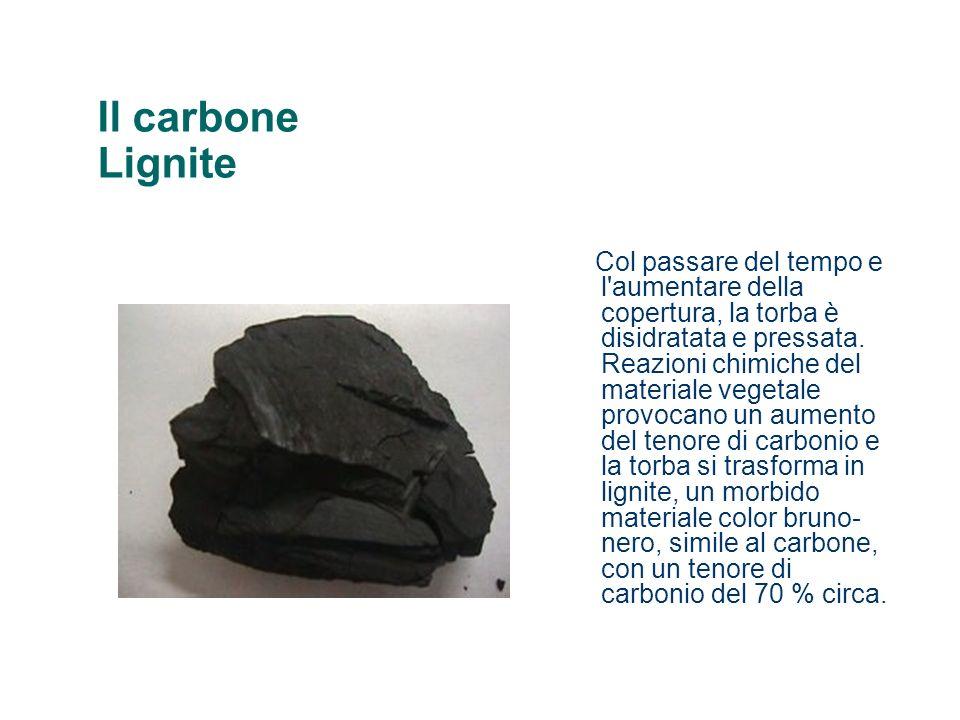 Il carbone Lignite Col passare del tempo e l'aumentare della copertura, la torba è disidratata e pressata. Reazioni chimiche del materiale vegetale pr
