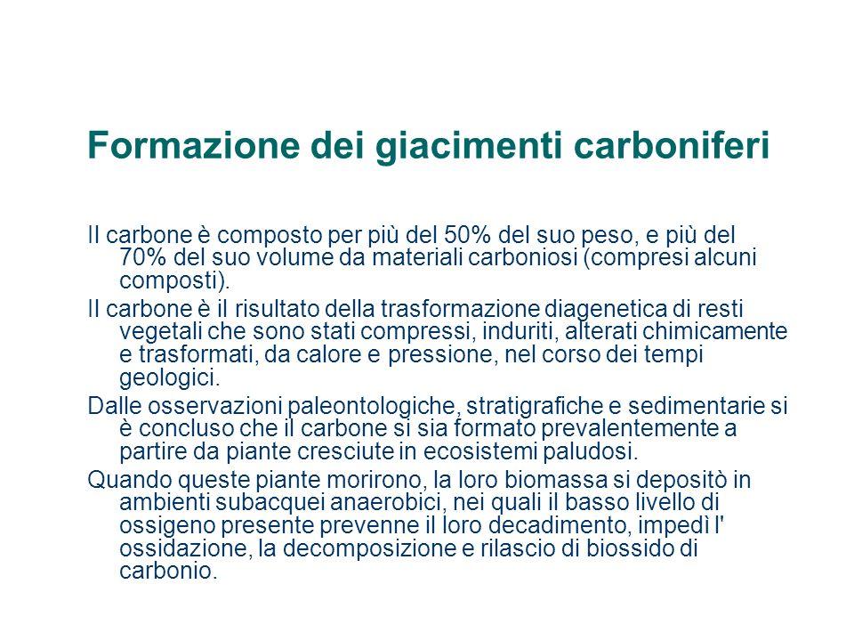 Formazione dei giacimenti carboniferi La nascita e la morte di generazioni successive di piante formarono spessi depositi di materia organica lignea non ossidata, in seguito ricoperti da sedimenti e compattati in depositi carbonacei come torba, bitume o antracite.