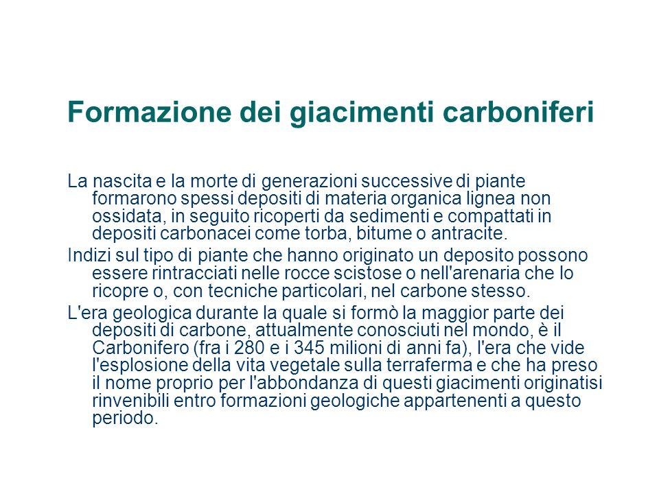 Formazione dei giacimenti carboniferi La nascita e la morte di generazioni successive di piante formarono spessi depositi di materia organica lignea n