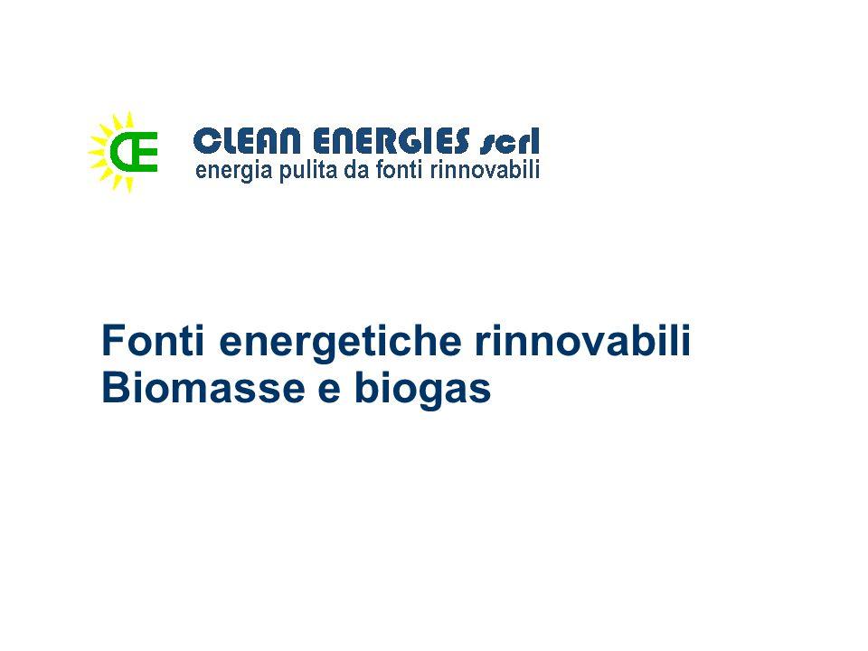 Fonti energetiche rinnovabili Biomasse e biogas
