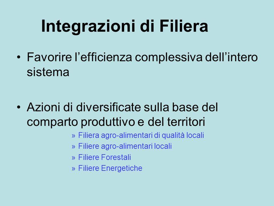 Integrazioni di Filiera Favorire lefficienza complessiva dellintero sistema Azioni di diversificate sulla base del comparto produttivo e del territori