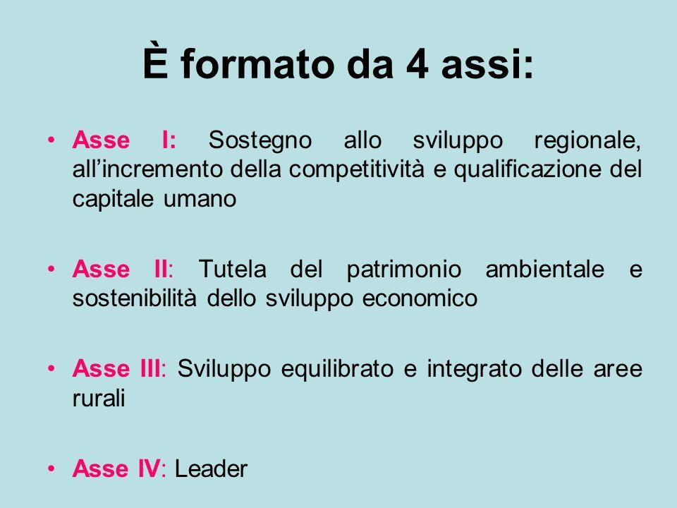 È formato da 4 assi: Asse I: Sostegno allo sviluppo regionale, allincremento della competitività e qualificazione del capitale umano Asse II: Tutela d