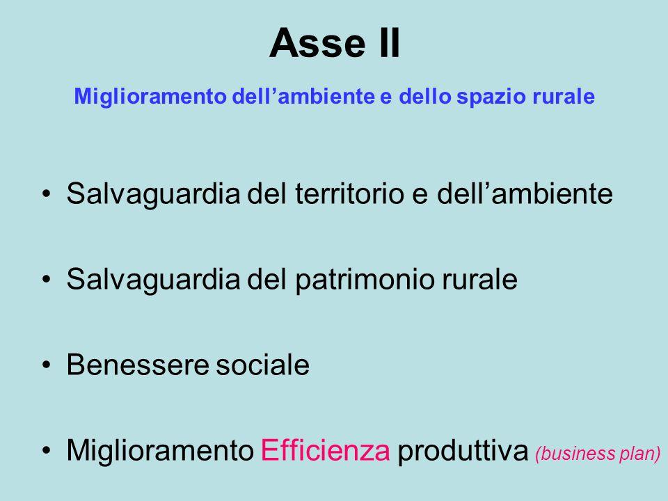 Asse II Salvaguardia del territorio e dellambiente Salvaguardia del patrimonio rurale Benessere sociale Miglioramento Efficienza produttiva (business