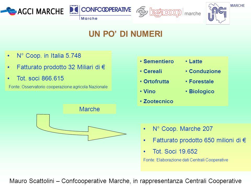 UN PO DI NUMERI MARCHE N° Coop. in Italia 5.748 Fatturato prodotto 32 Miliari di Tot. soci 866.615 Fonte: Osservatorio cooperazione agricola Nazionale