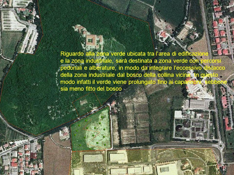 Riguardo alla zona verde ubicata tra larea di edificazione e la zona industriale, sarà destinata a zona verde con percorsi pedonali e alberature, in modo da integrare leccessivo distacco della zona industriale dal bosco della collina vicina.