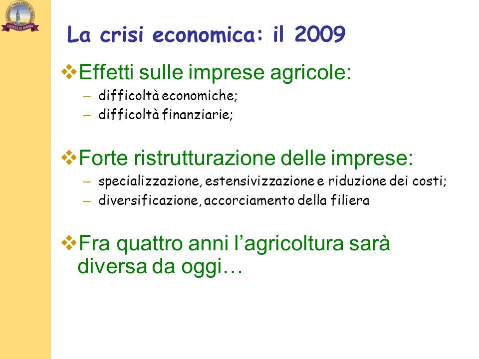 La crisi economica: il 2009 Effetti sulle imprese agricole: – difficoltà economiche; – difficoltà finanziarie; Forte ristrutturazione delle imprese: – specializzazione, estensivizzazione e riduzione dei costi; – diversificazione, accorciamento della filiera Fra quattro anni lagricoltura sarà diversa da oggi…