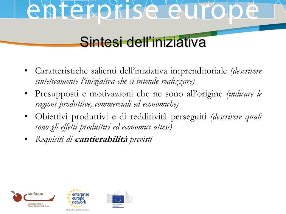Azienda Speciale della Camera di Commercio Sintesi delliniziativa Caratteristiche salienti delliniziativa imprenditoriale (descrivere sinteticamente l