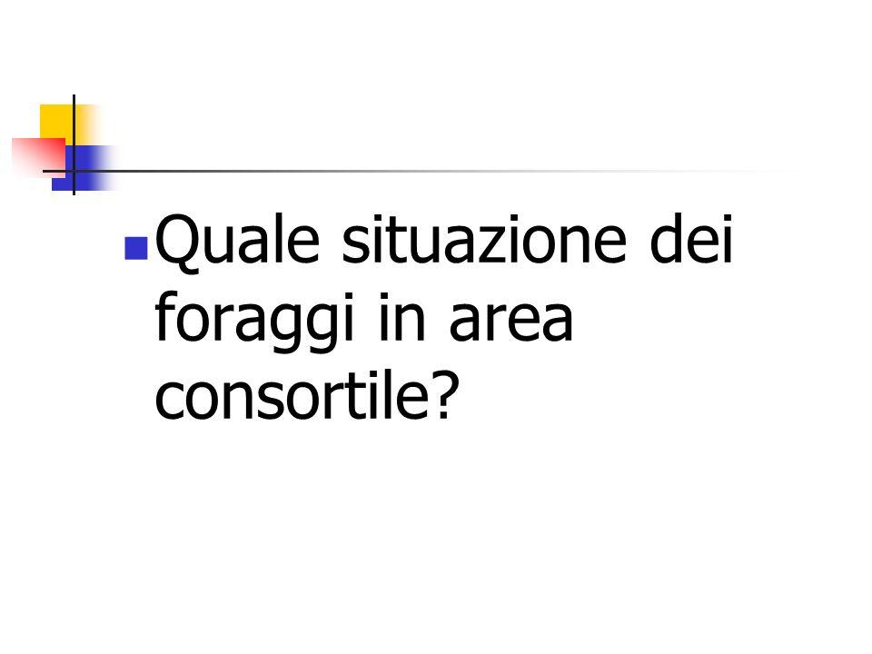 Quale situazione dei foraggi in area consortile?
