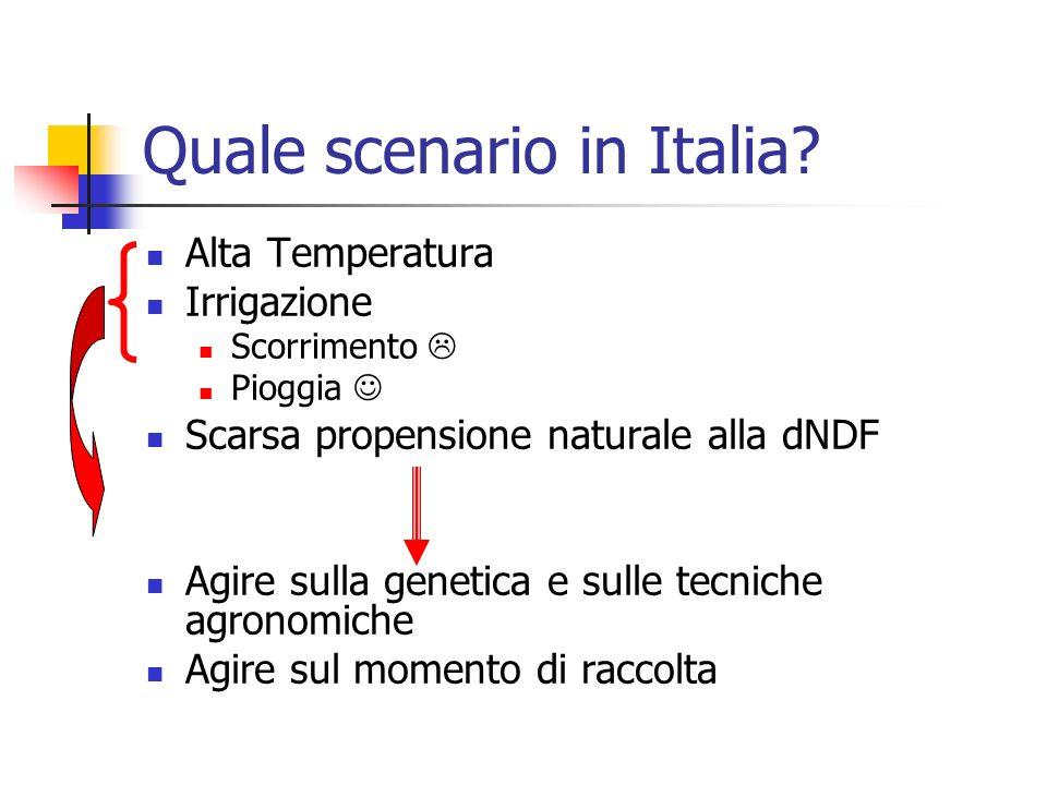 Quale scenario in Italia? Alta Temperatura Irrigazione Scorrimento Pioggia Scarsa propensione naturale alla dNDF Agire sulla genetica e sulle tecniche