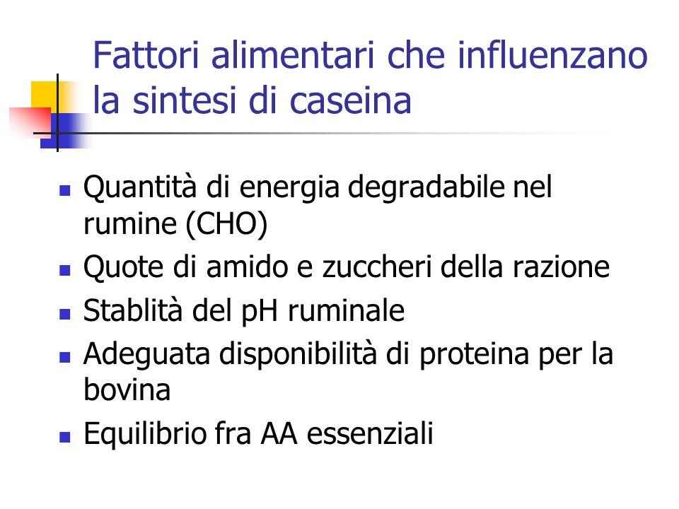 Quale scenario in Italia.
